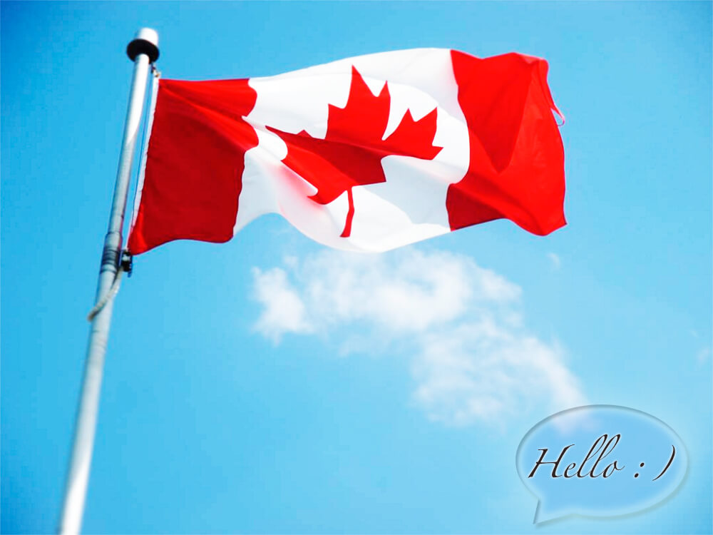 Picture of Chat Canada